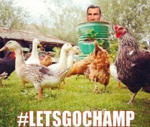 Lets Go Champ - Shannon Briggs