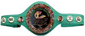 Mike Tyson vs Roy Jones Jr. Will Be For a WBC Belt | boxen247.com