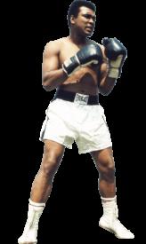 Senaste Boxing News | Boxen247.com