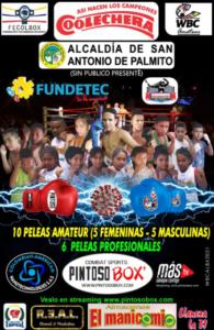 Luis Melendez Defeats Jeyson Cervantes in San Antonio de Palmito | Boxen247.com