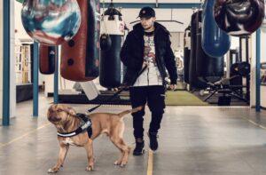 Underdog Edwards Out to Upset Odds & Become World Champ | Boxen247.com/com
