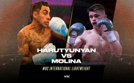 10-0 Artem Harutyunyan faces Samuel Molina in Germany on Sept 25 | Boxen247.com (Kristian von Sponneck)