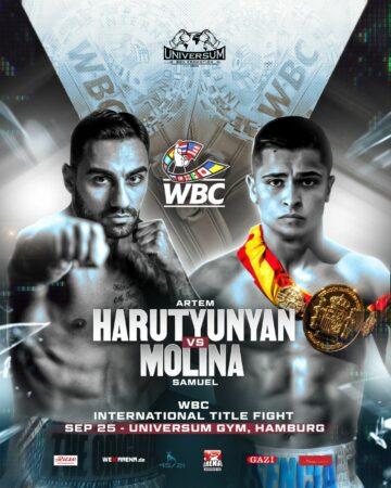 Artem Harutyunyan faces Samuel Molina in Germany tomorrow (Saturday)   Boxen247.com (Kristian von Sponneck)