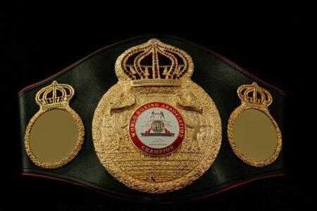 WBA world title reduction plan has made important advances   Boxen247.com (Kristian von Sponneck)